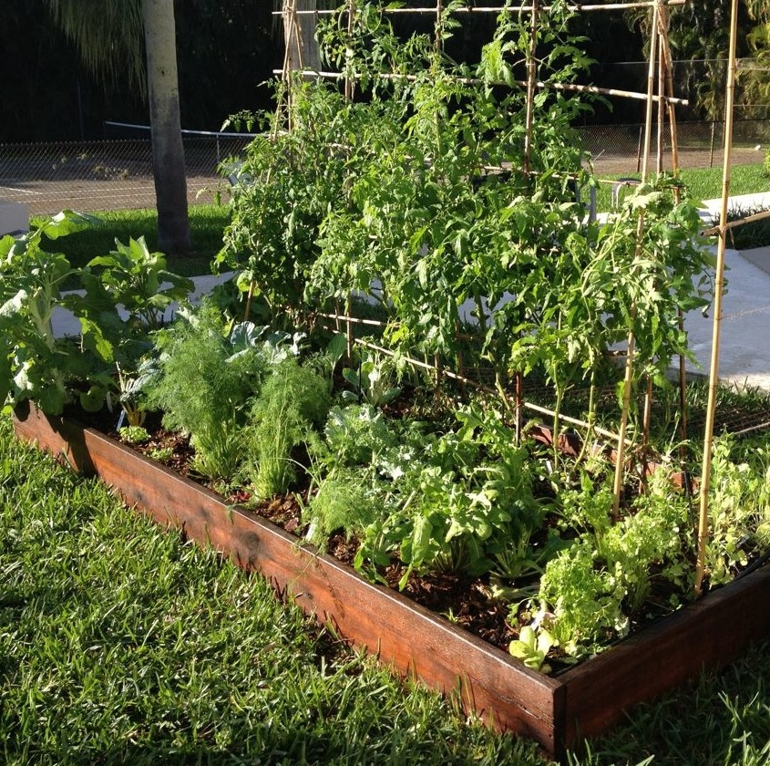 raised bed garden package